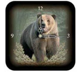 Falióra medve